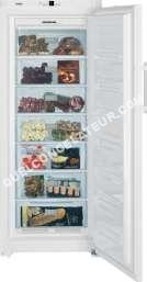 Congélateur armoire GN3613